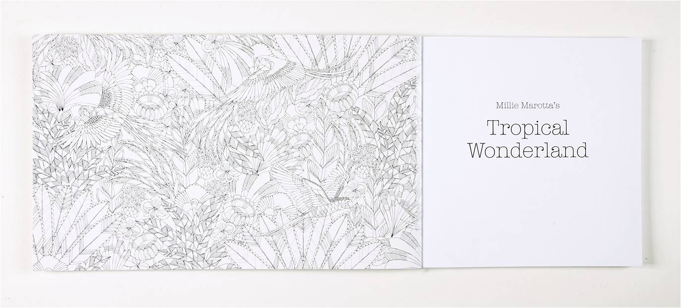 A page from Millie Marotta's Tropical Wonderland: A Colouring Book Adventure